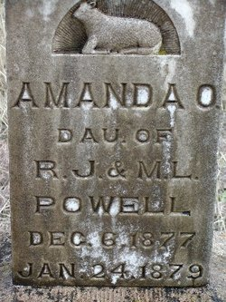 Amanda O Powell