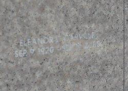 Eleanor L Carville
