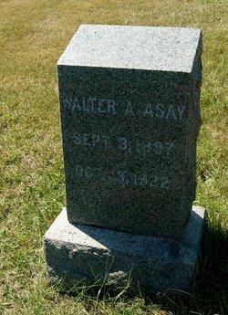 Walter A. Asay