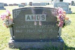 James Monroe Amos