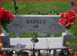 Evelyn R. <i>Schumann</i> Barnes