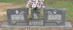 Addie Marie <i>Carruth</i> Allen