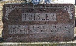 Mary Elizabeth <i>Warinner</i> Trisler