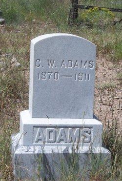 C W Adams