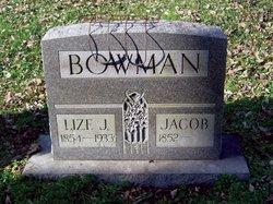 Eliza Jane Lize <i>Holt</i> Bowman