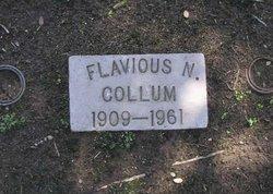 Flavious N. Collum