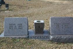 Sarah Jane <i>Arender</i> Anderson