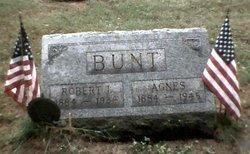 Robert Irving Bunt