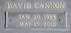 David Cannon Piggott