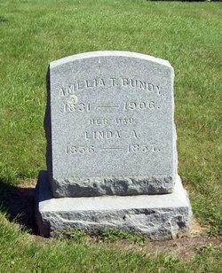 Amelia T Bundy