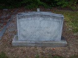 Elam Pinckney Aiken