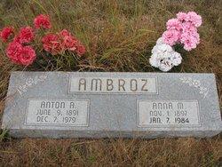 Anna M Ambrose