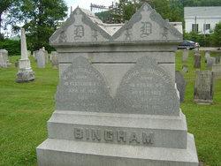 William Henry Harrison Bingham