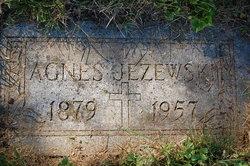 Agnes Molly <i>Schmitt</i> Jezewski
