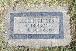 Joseph Ridges Anderson
