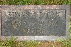 Susan Jane <i>McGinnis</i> Fagan
