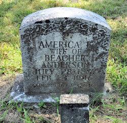 America Elizabeth <i>Chaffin</i> Anderson