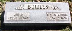 Lou D Bowles