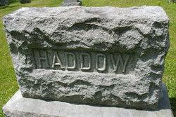 Alexander Alex Haddow