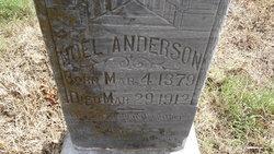 Noel Anderson