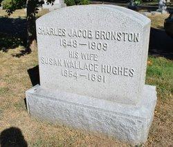 Charles Jacob Bronston, Sr