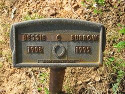 Bessie Elmie <i>Bristow</i> Burrow