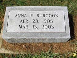 Anna E Burgoon
