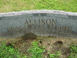 W Albert Allison