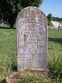 Mary B <i>Henning</i> Alexander