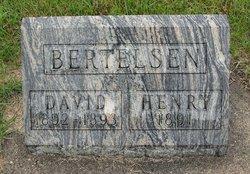 David Bertelsen