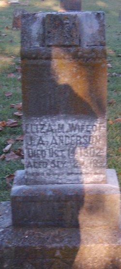 Eliza M <i>Jones</i> Anderson