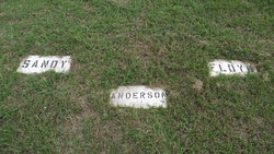 Sandy Anderson