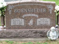 Eugene Fredrick Bornsheuer