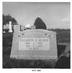 Elizabeth Ann <i>Deen</i> Allred