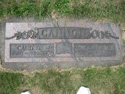 Caud Cannon