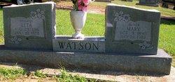 Mary Catherine <i>Perkins</i> Watson