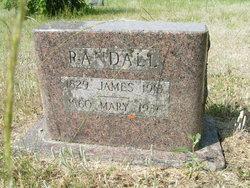 Mary Ella <i>Bowman</i> Randall