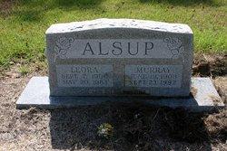 Murray Alsup