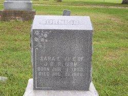 Sarah Elizabeth <i>McComas</i> Burnison