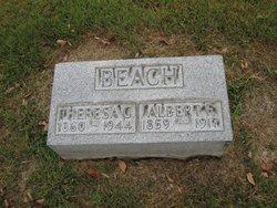 Albert F. Beach