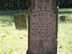 Mary S. Ellis