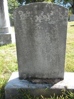 George Ellis Errickson