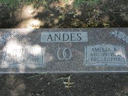 Amelia Kathryn <i>Turk</i> Andes