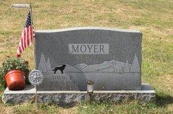 David P Moyer