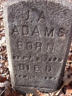 J A Adams