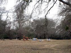 Sand Prairie Cemetery