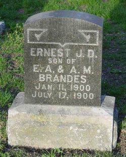 Ernest J.D. Brandes