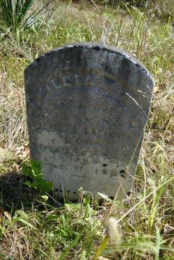 William Daniel Bronaugh