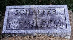 Charles J Schaefer