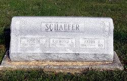 Anton J Schaefer